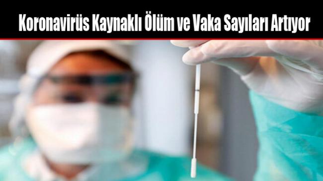 Koronavirüs Kaynaklı Ölüm ve Vaka Sayıları Artıyor