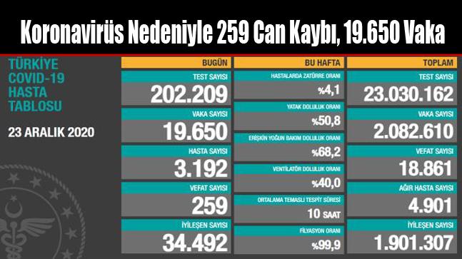 Koronavirüs Nedeniyle 259 Can Kaybı, 19.650 Vaka